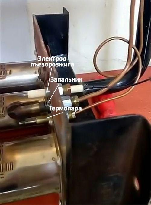 Shag-7.jpg
