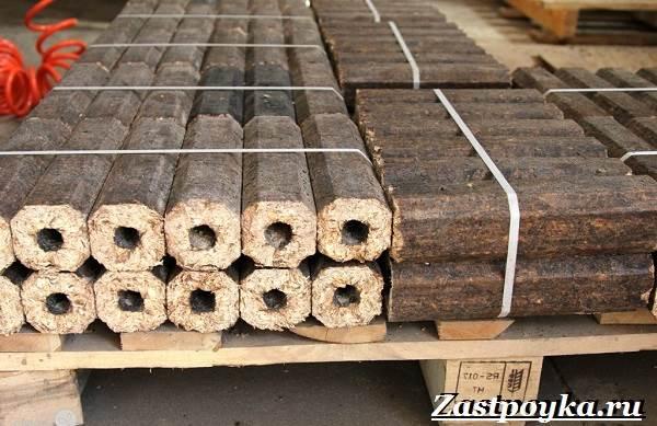 Топливные-брикеты-Описание-свойства-виды-и-цена-топливных-брикетов-1
