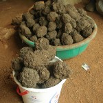 Briquette_Uganda_1-150x150.jpg