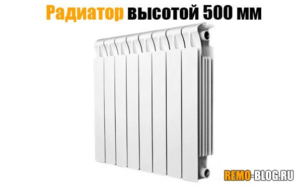 radiator-500mm.jpg