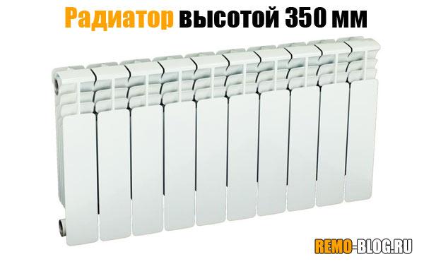 radiator-350mm.jpg
