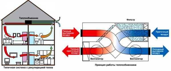 image11-2.jpg
