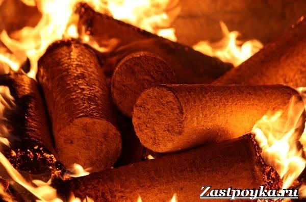 Топливные-брикеты-Описание-свойства-виды-и-цена-топливных-брикетов-3