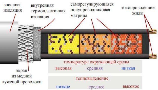 i49051-640x365.jpg