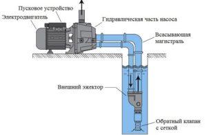 jezhektor-vneshnij-300x195.jpg