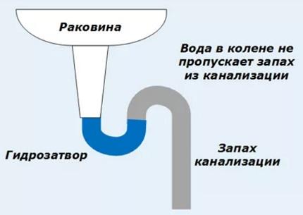 sifon-dlya-moyki-2a.jpg