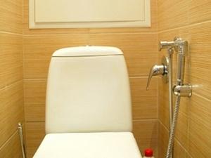 gigienicheskij-dush-dlya-unitaza-1.jpg