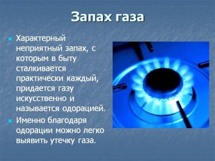 zapakh-gaza-430x323.jpg