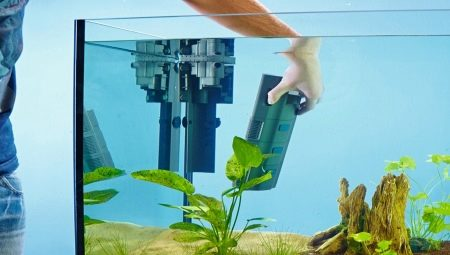 kak-pravilno-ustanovit-filtr-v-akvarium.jpeg