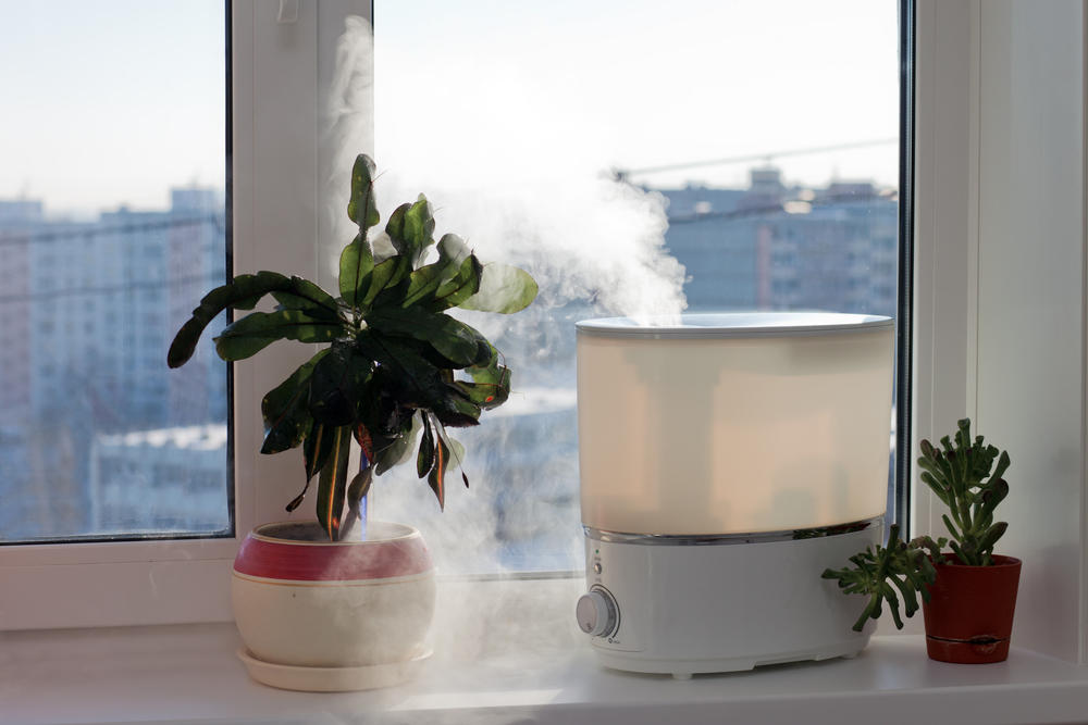 lionesse-cool-versus-warm-air-humidifiers-steam.jpg