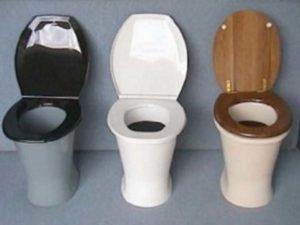 дачный-туалет.-3-унитаза-300x225.jpg